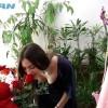 Ρεπορτάζ για την Ημέρα των Ερωτευμένων στην Σπάρτη. Βίντεο