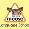 Οι Εγγραφές Ξεκίνησαν στο Φροντιστήριο Moose Language Schools στην Σπάρτη