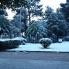 Νέα χιονόπτωση στο κέντρο της Σπάρτης. Προσοχή στο Οδικό δίκτυο.