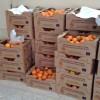 Διανομή φρούτων από την Π.Ε. Λακωνίας