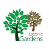 Δικαίωμα για συνδεδεμένη ενίσχυση στους παραγωγούς πορτοκαλιού μέσα από τους Λακωνικούς Κήπους