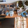 Συμμορία αέργων «έσπερνε» Ναρκωτικά σε Λακωνία Πελοπόννησο
