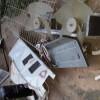 Άγνωστοι προκάλεσαν βανδαλισμούς στο Σχολείο Αμυκλών