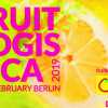 Πρόσκληση ενδιαφέροντος για την Fruit Logistica 2019 από το Επιμελητήριο Λακωνίας