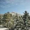 Εξόρμηση στον Πάρνωνα από τον Ορειβατικό Σύλλογο Σπάρτης