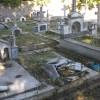 Σπάρτη : Ως πότε Νεκροταφείο ΜΕΣΑ στην πόλη;