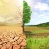 """Δημόσια συζήτηση στη Σπάρτη με θέμα: """"Γεωργία, Κλιματική Αλλαγή και Βιώσιμη Ανάπτυξη"""""""