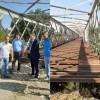 Ανάδειξη συντήρηση και βαφή της Γέφυρας Ευρώτα!