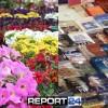 Πόσο Δύσκολο είναι…Μια έκθεση Βιβλίου Μια έκθεση Λουλουδιών στη Σπάρτη!!!