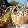 Οκτώβριος στη Βαμβακού… για να πούμε το καρύδι… καρυδάκι!