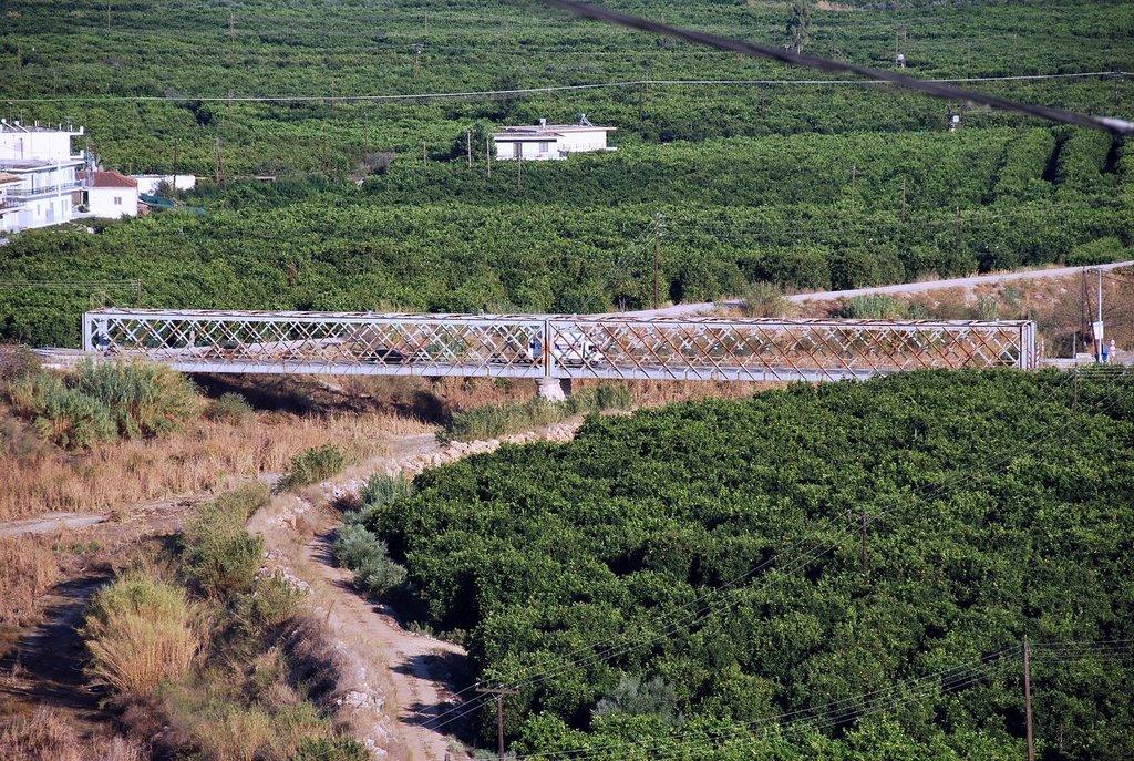 Άμεσες παρεμβάσεις για την αποκατάσταση της Γέφυρας του Ευρώτα ζητά η Φεβρωνία Πατριανάκου