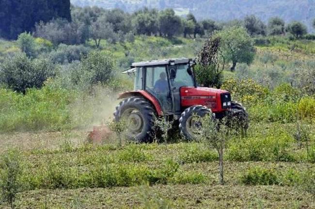 Μέχρι 30 Νοεμβρίου η κατάθεση δικαιολογητικών για το Αγροτικό Τιμολόγιο