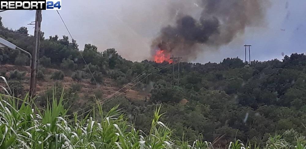 Πυρκαγιά στο Μαυροβούνι Γυθείου – Φωτογραφίες