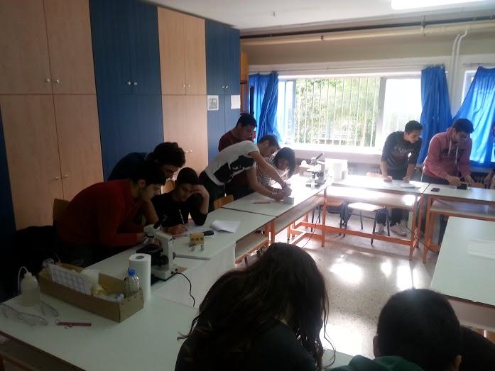 Αρίστευσαν οι μαθητές της Λακωνίας στον προκριματικό για την Ολυμπιάδα Επιστημών